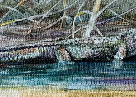 Afternoon Alligator Art   Blissful Bonita Art Studio & Gallery