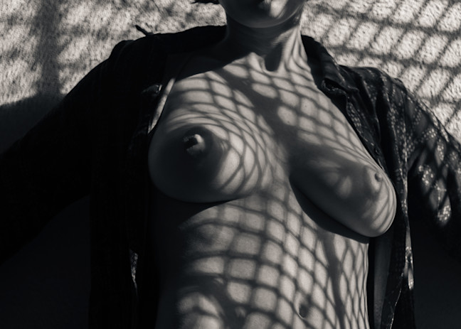 Olive Shadow Play Photography Art | Dan Katz, Inc.