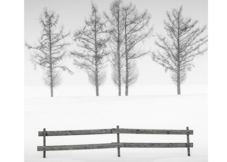 Biei16 Art | Roy Fraser Photographer