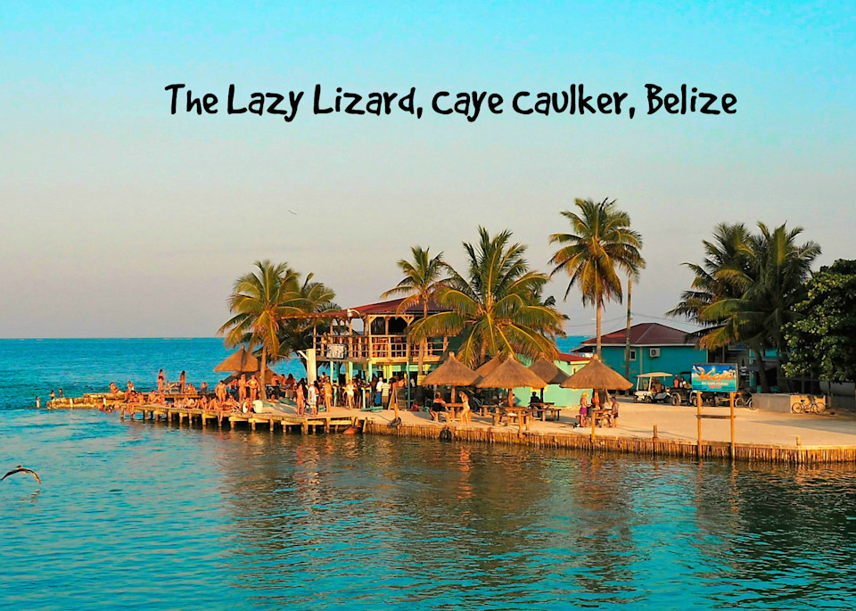 Lazy Lizard Bar
