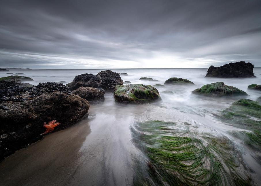 Tides Treasures Art | Chad Wanstreet Inc