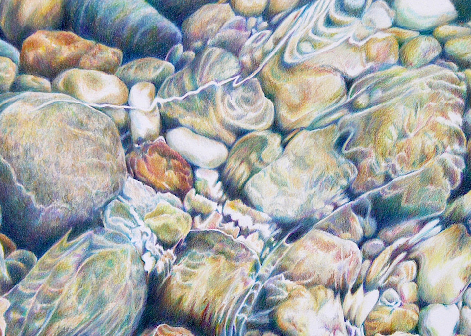 Tidal Pool Art | ebaumeistermcintyre