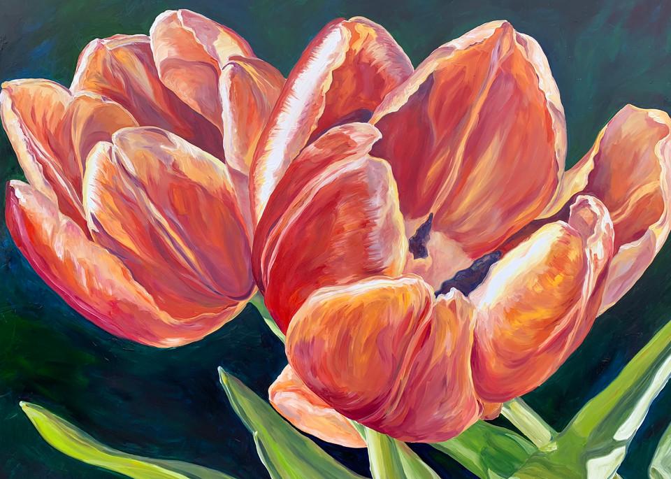 Tulip Sunset Art   ebaumeistermcintyre