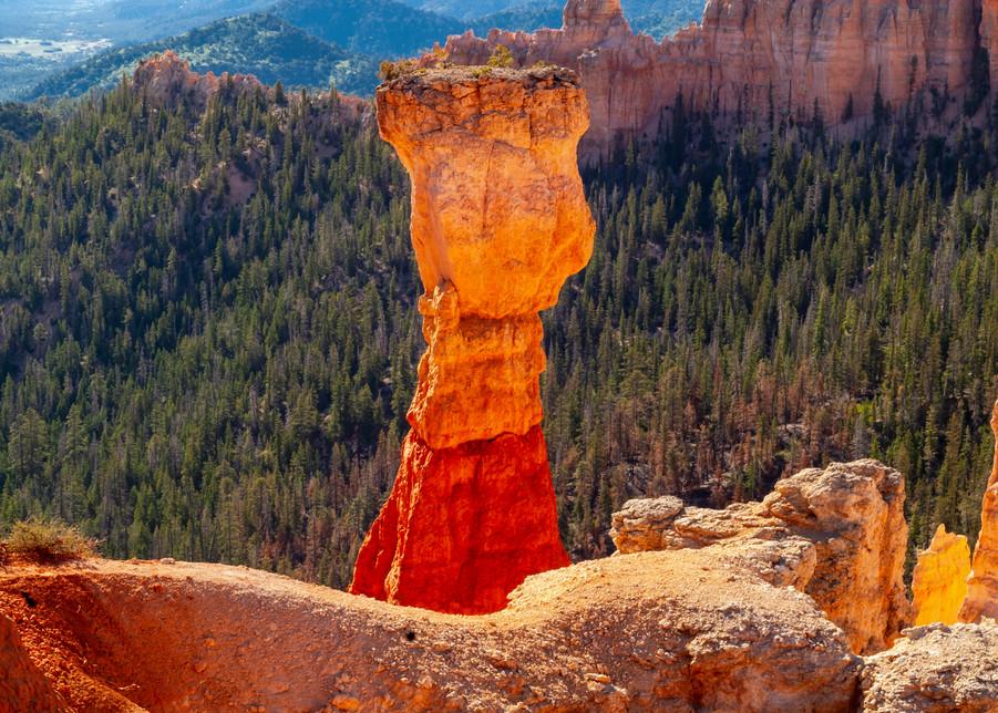 Bryce Hoo Doo Photography Art   Great Wildlife Photos, LLC