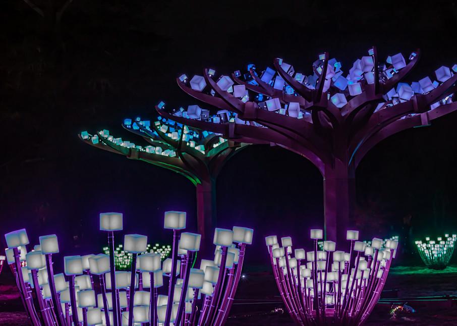 Glow Cubes Photography Art | Ron Olcott Photography