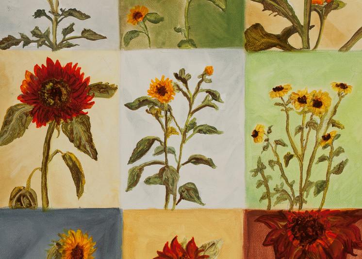 Sunflowers Art | Sarah E. McCord- Metaphysical Portraitist