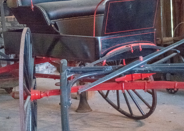 Black And Red Buggy  Photography Art | Great Wildlife Photos, LLC
