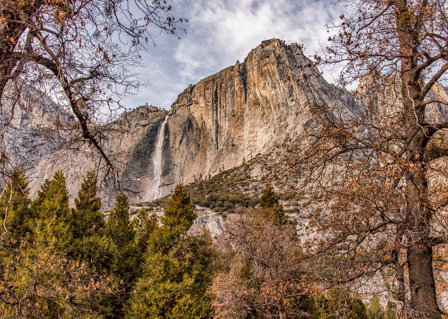 Yosemite Falls Pine Trees Art   Michael Blanchard Inspirational Photography - Crossroads Gallery