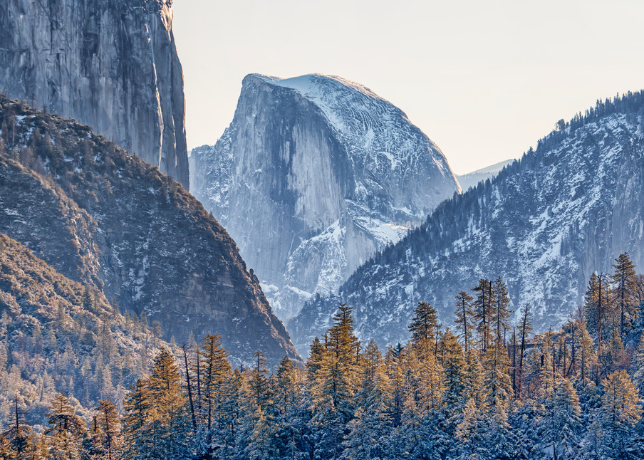 Yosemite Half Dome Forest Art   Michael Blanchard Inspirational Photography - Crossroads Gallery
