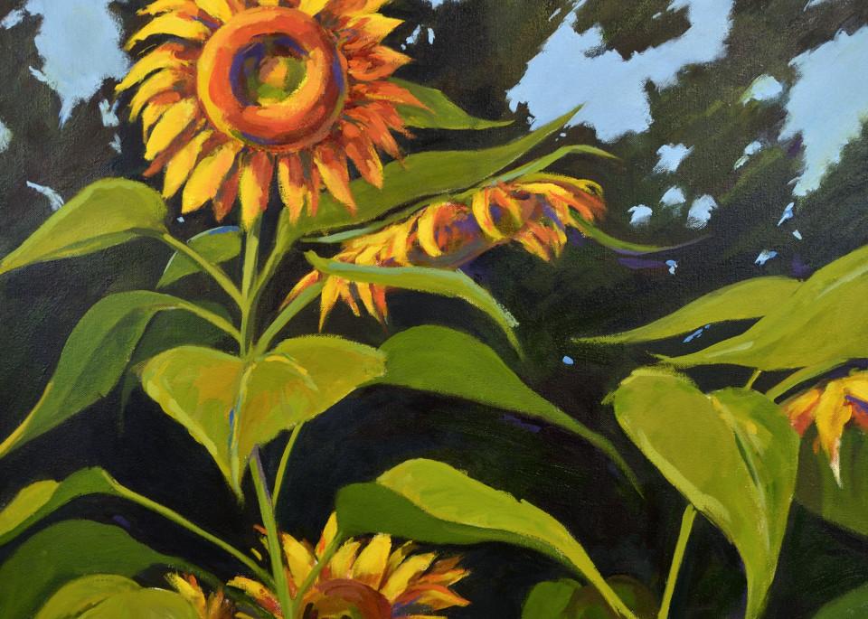 Large Sunflowers Print Art | Jenn Hallgren Artist
