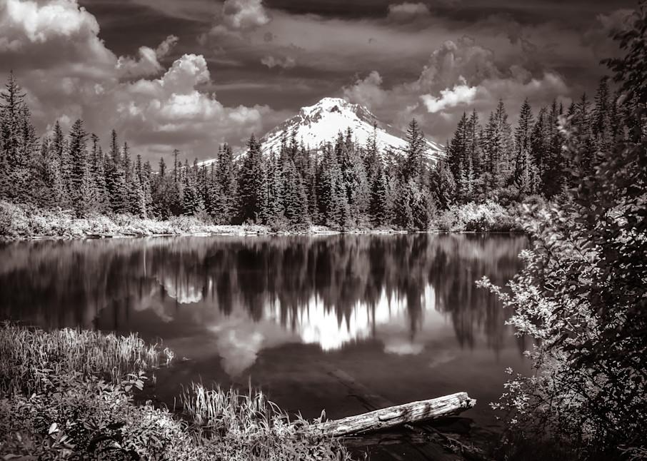 Art Print of Beyond the Pond