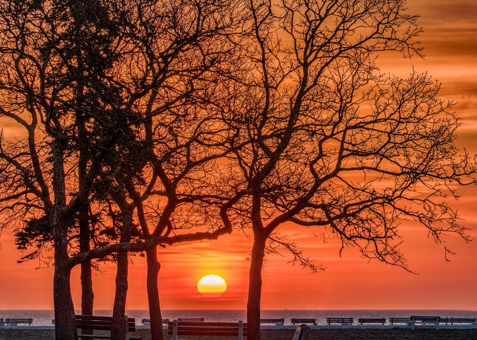 Waban Park Spring Sunrise Art | Michael Blanchard Inspirational Photography - Crossroads Gallery