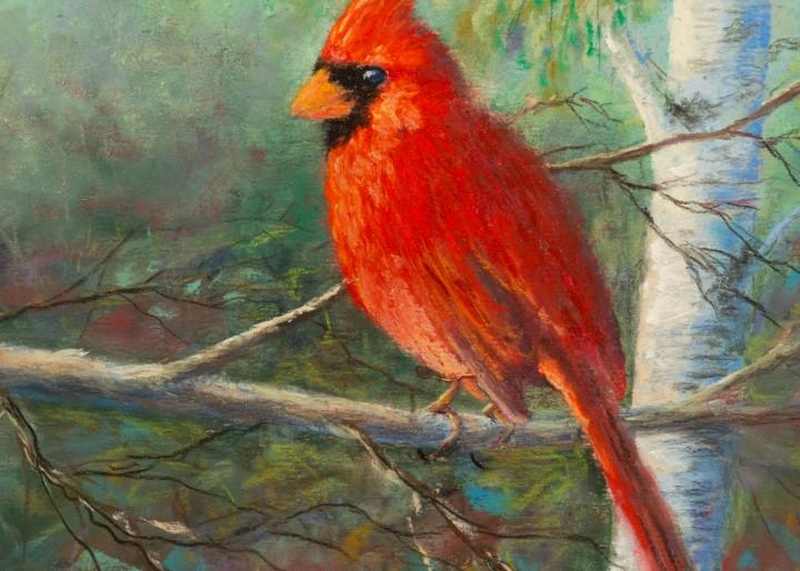 Evening Cardinal Art | Mark Grasso Fine Art