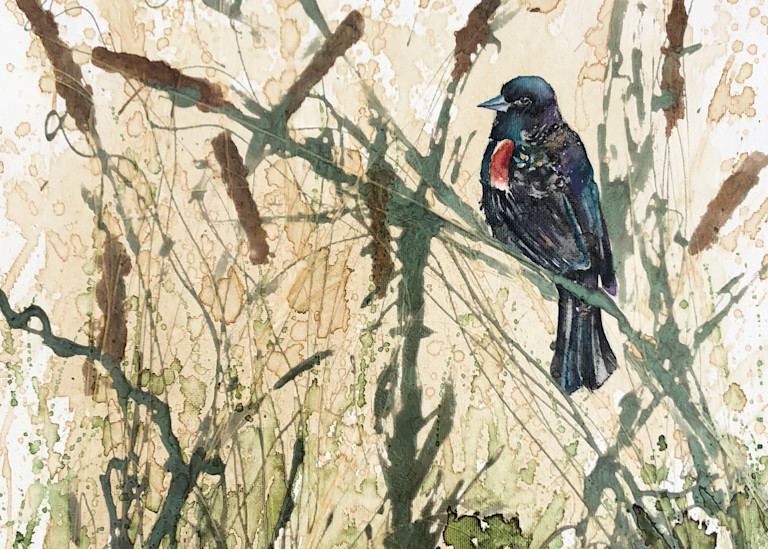 Red Winged Black Bird Painting