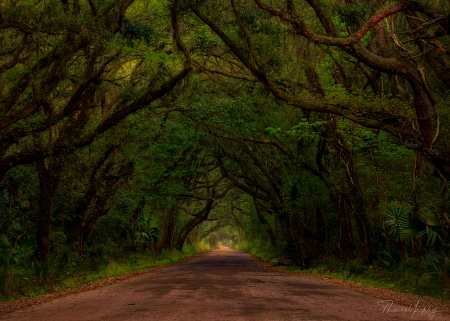Botany Bay Tunnel Photography Art   Thomas Yackley Fine Art Photography