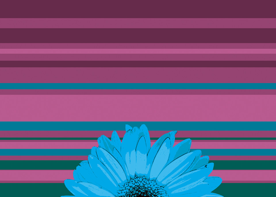 Sunshine Daisy #3 Art | Jon Savage Contemporary Art