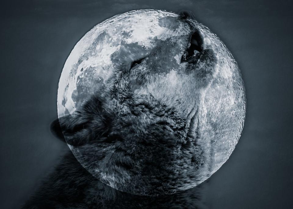 Spirit of the Wolf