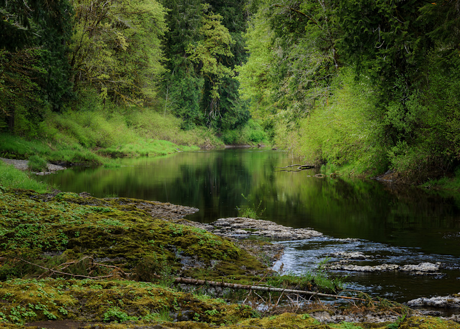Chehalis River, Rainbow Falls State Park, Washington, 2021