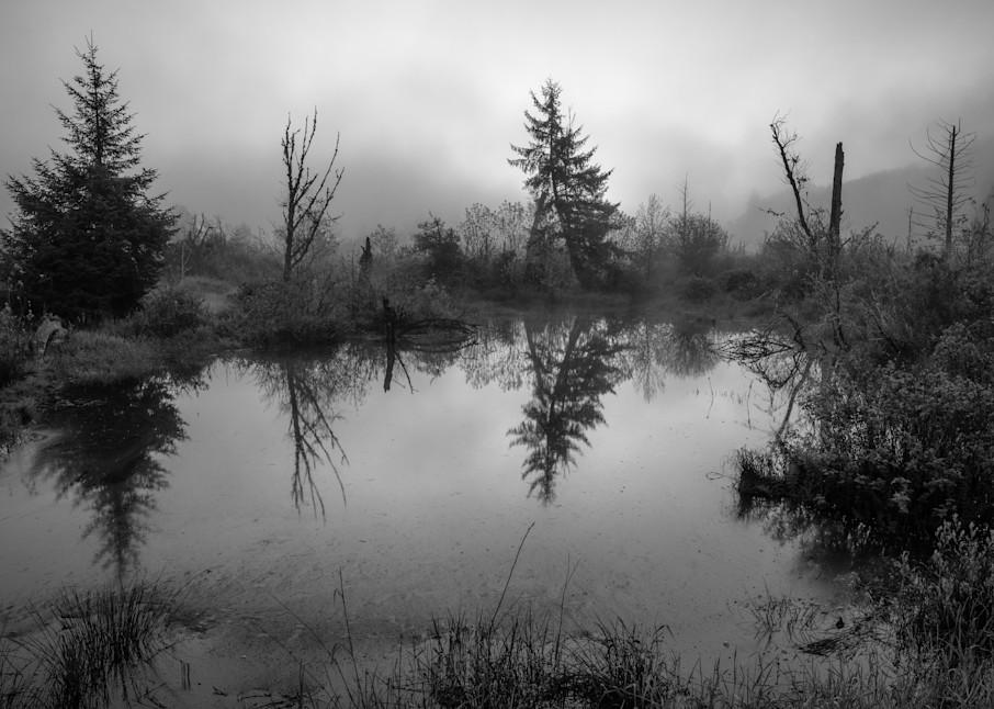 Grays River Estuary, Washington, 2021