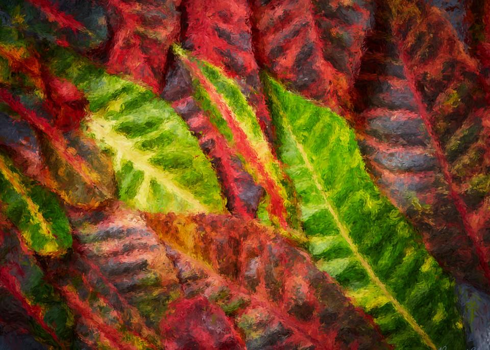 Hawaii Croton Art   Rick Peterson Studio