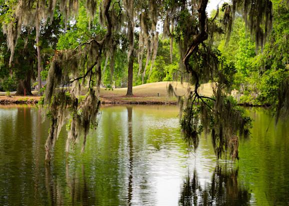 South Carolina Photography Art   Ursula Hoppe Photography