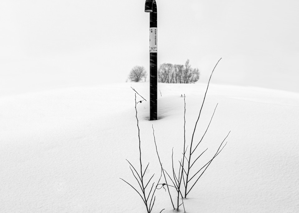 Image00120 Art | Roy Fraser Photographer