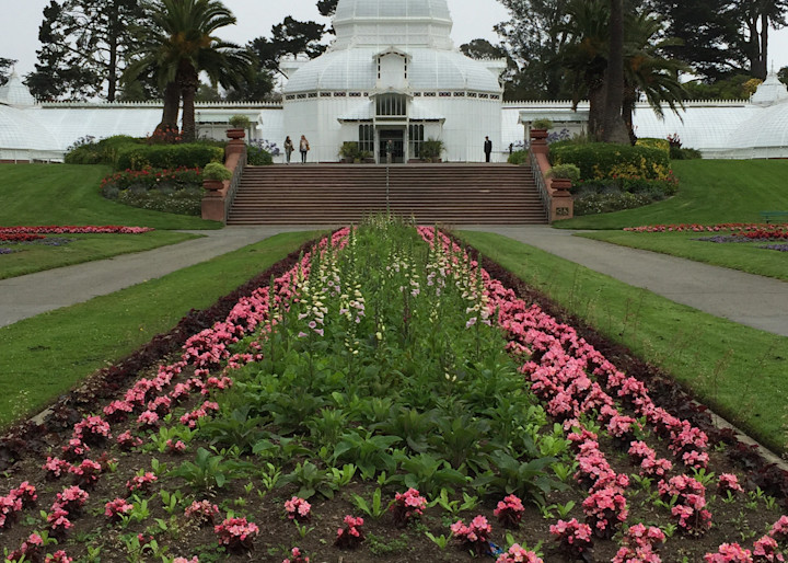 San Francisco Conservatory Of Flowers Photography Art   Kathleen Messmer Photography