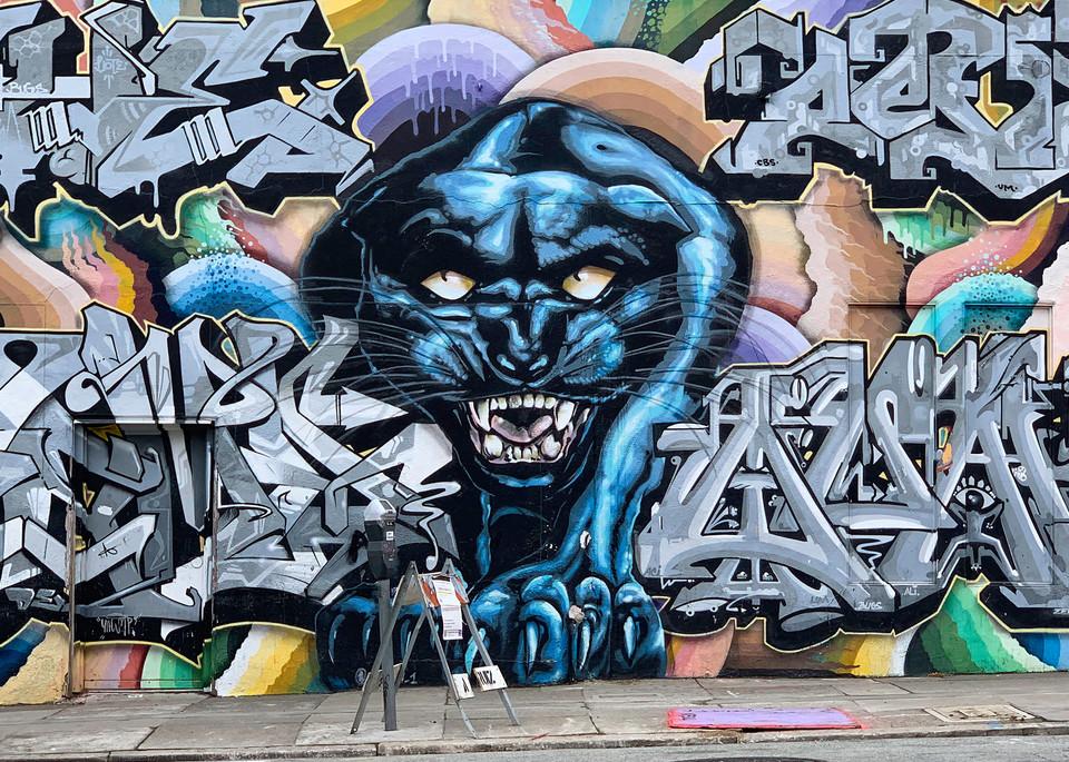 Graffiti Leopard Photography Art   Kathleen Messmer Photography