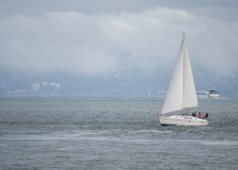 Sailing The Bay 2 Photography Art   Kathleen Messmer Photography