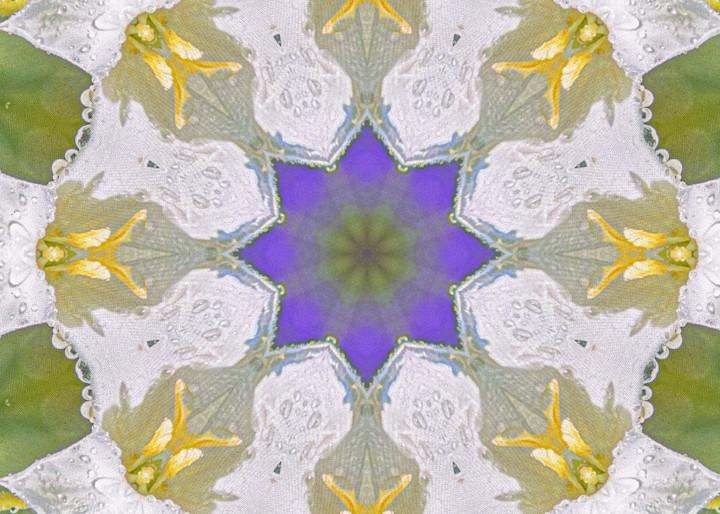 Purple And Lace Art | karenihirsch