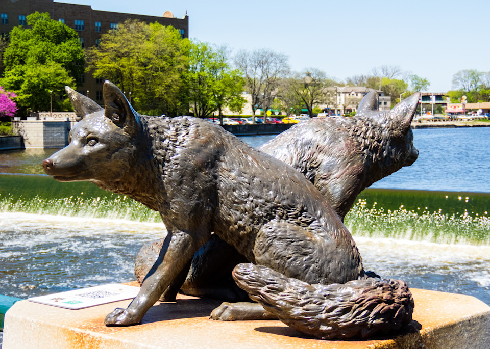 Foxes Statue Photography Art | Lake LIfe Images