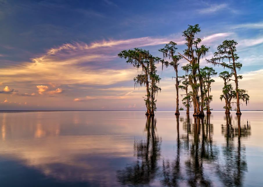 Dusk on Lake Maurepas | Shop Photography by Rick Berk