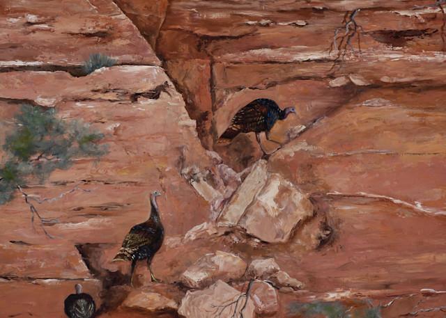 Wild Turkeys On The Rocks Art | Marsha Clements Art