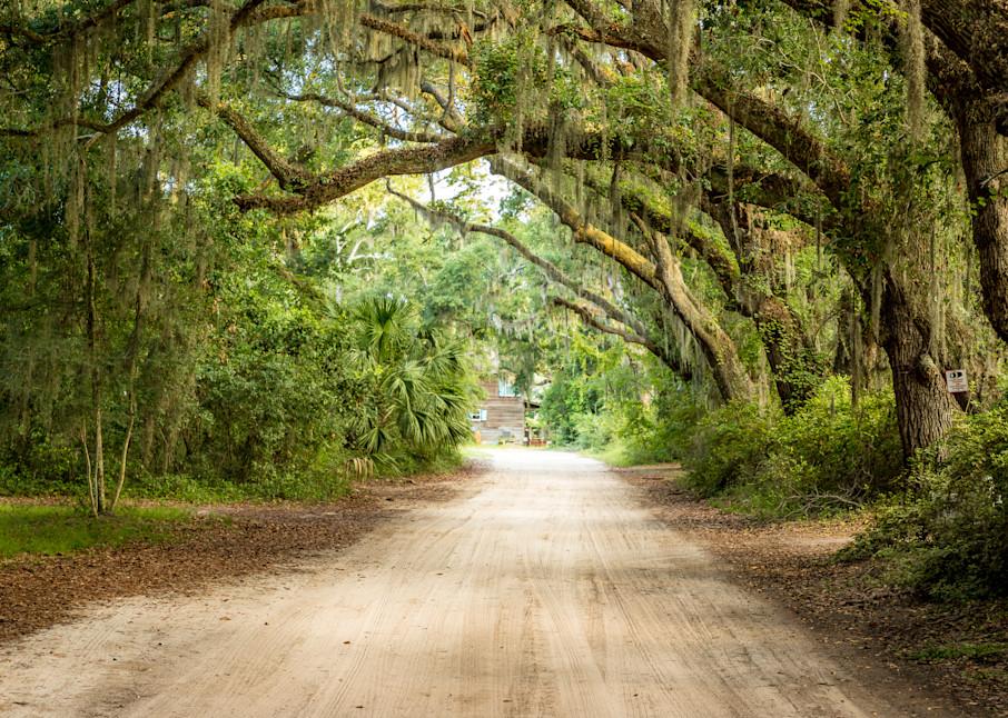 Lowcountry Backroads Photography Art | Willard R Smith Photography