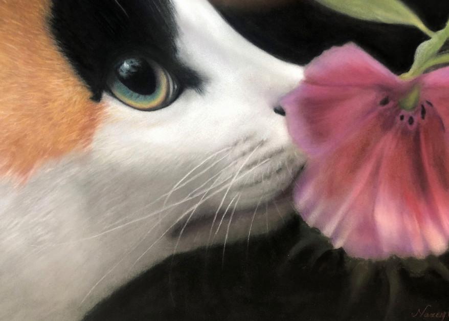 Cat portrait painting Flower Girl by Nancy Conant