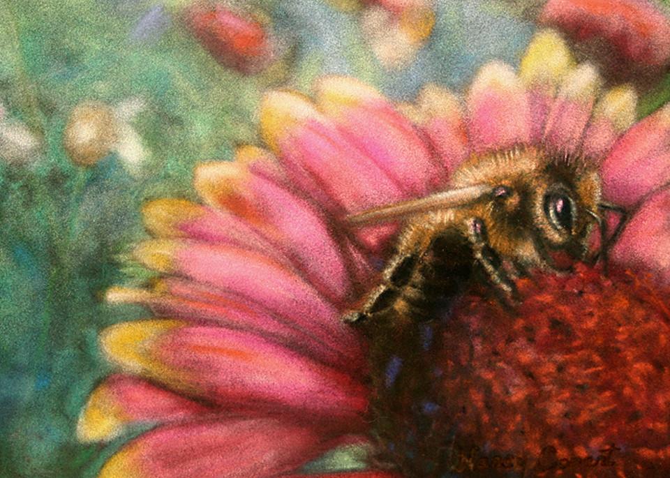 Let It Bee by Nancy Conant
