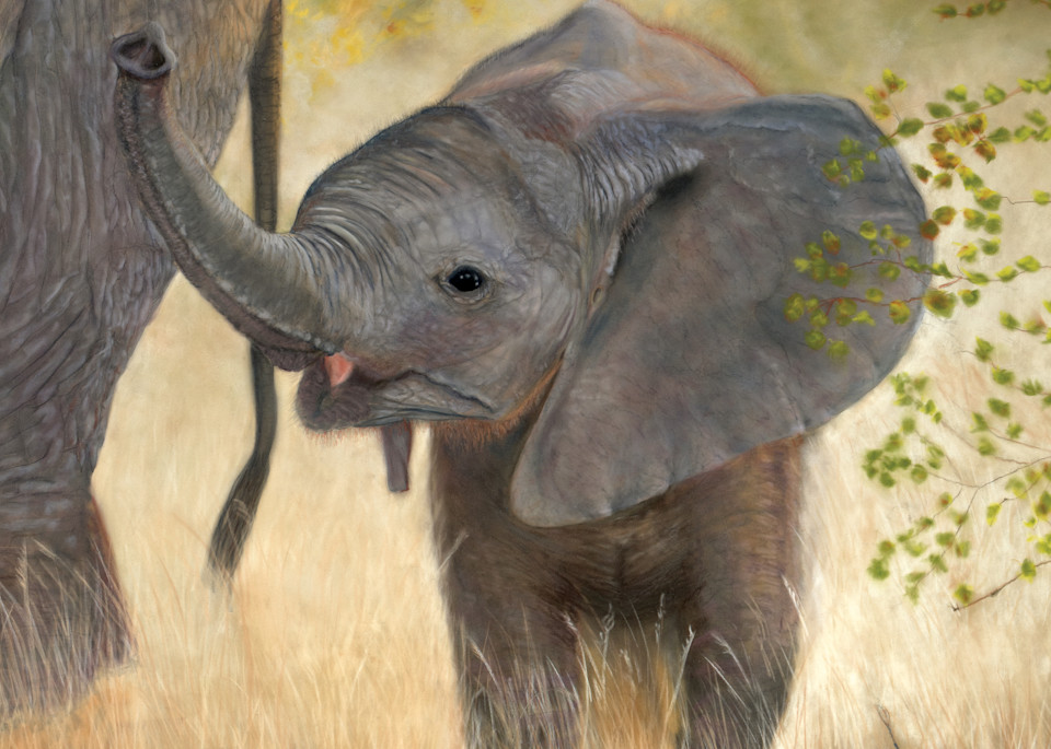 Baby elephant painting Tag-Along - Isaiah 40:11 by Nancy Conant
