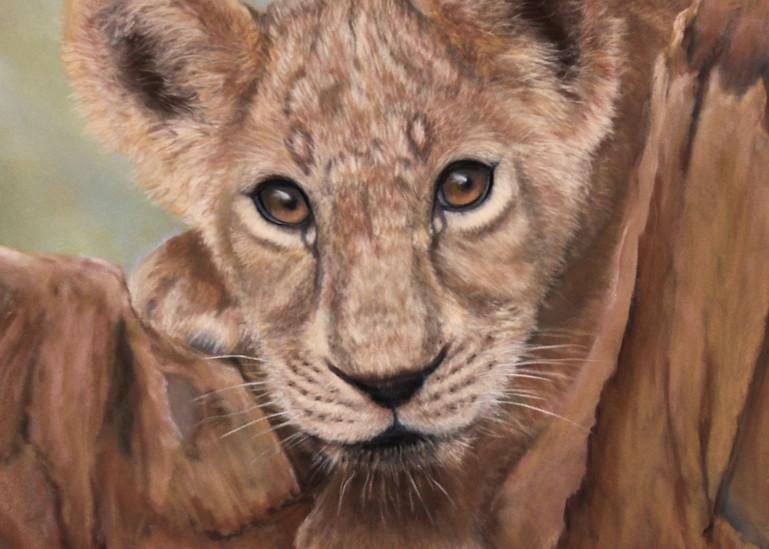 The Lion Cub by Nancy Conant