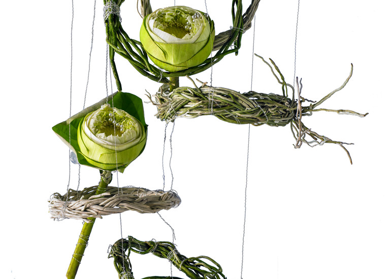 John E. Kelly Fine Art Photography – Lotus on Wires - Floral Portraits