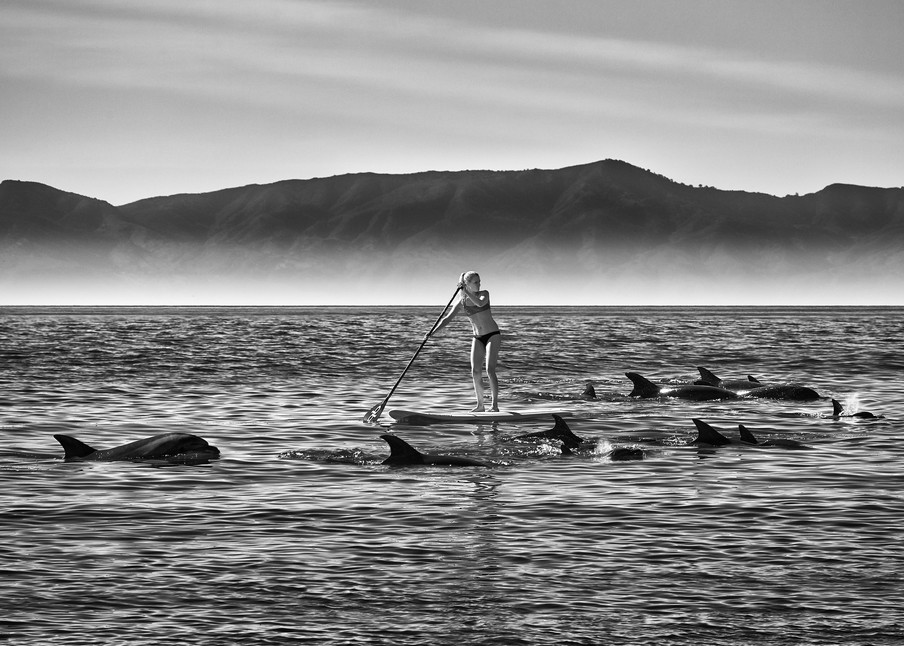 John E. Kelly Fine Art Photography – Paddles with Dolphins - Urbanism
