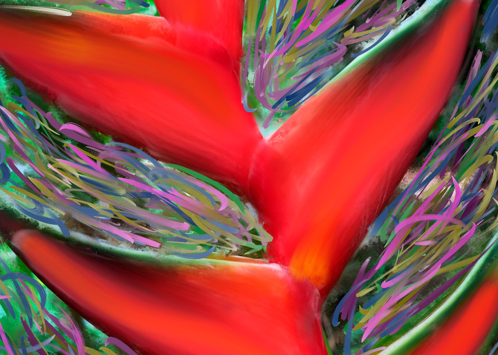 Heliconia Art | Rick Peterson Studio