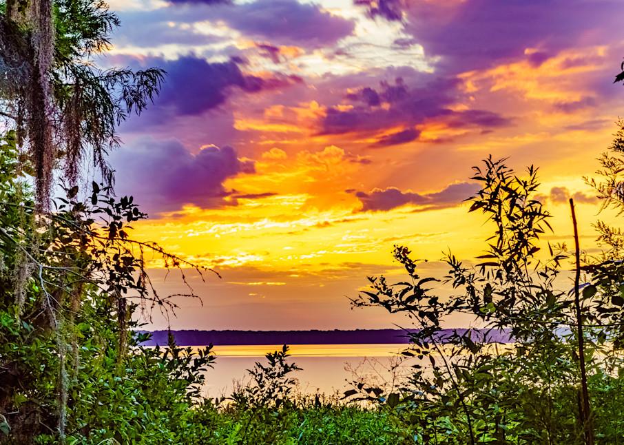 Newnans Lake Sunrise in Gainesville Florida Fine Art Print