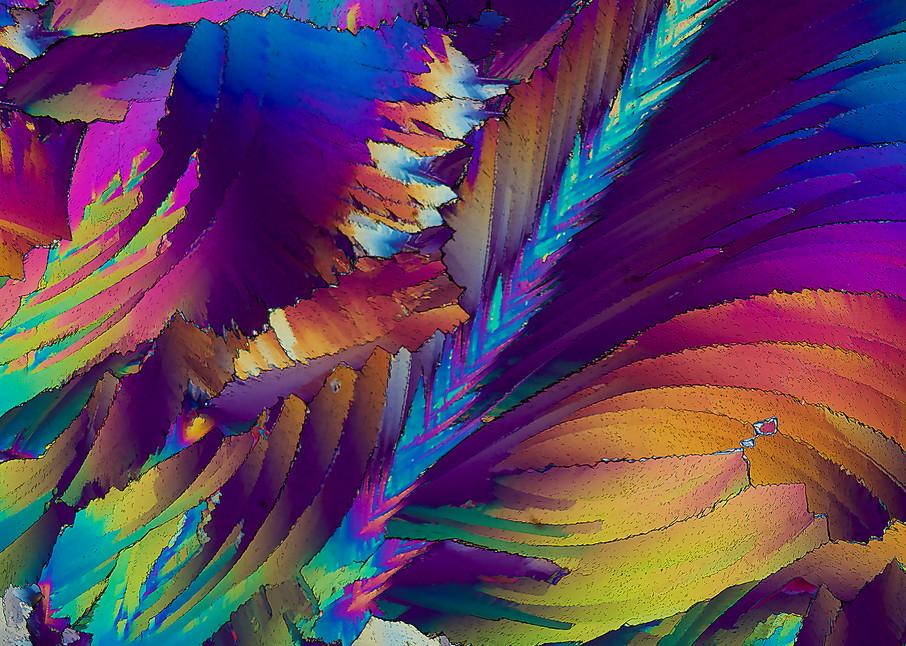 Joyology Art | Carol Roullard Art