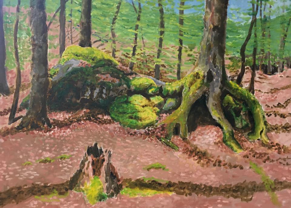 Mossy Rocks And Trees Art | JoemcInroy