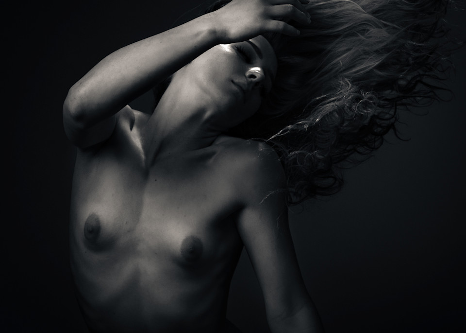 Morgan Wind Dance Photography Art   Dan Katz, Inc.
