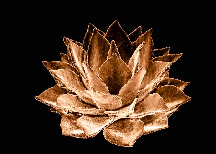 Agave Copper Art | Night Sculpture