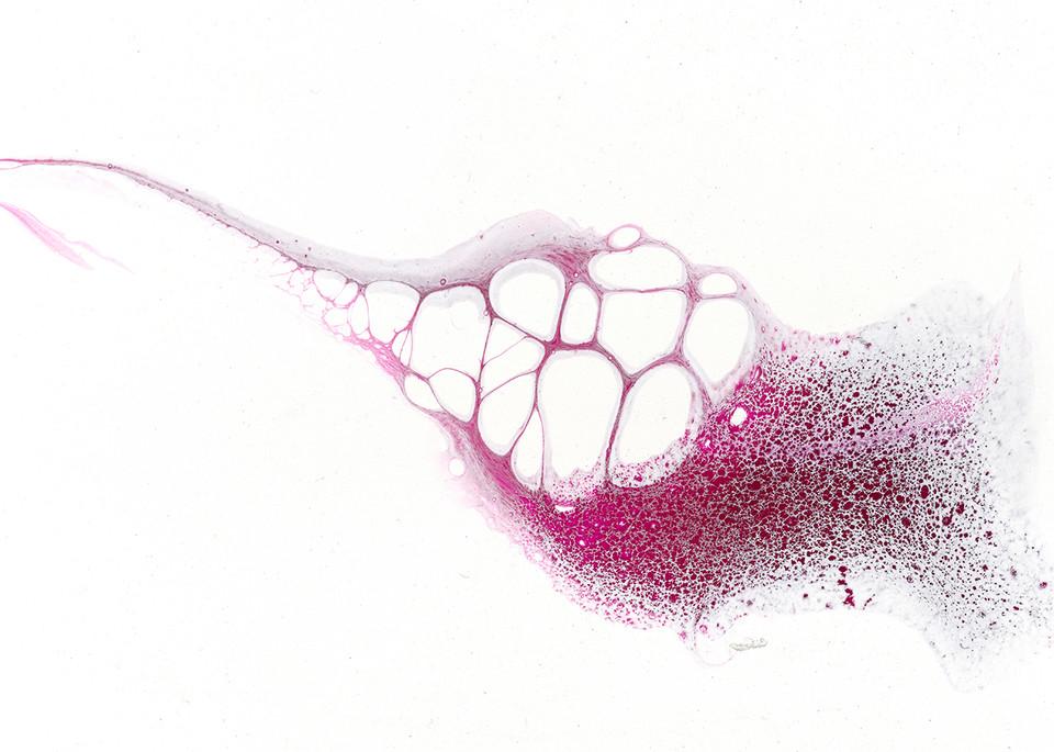 Closer Art | C. White Designs