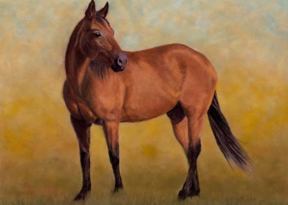 Lark the bay quarter horse by Nancy Conant