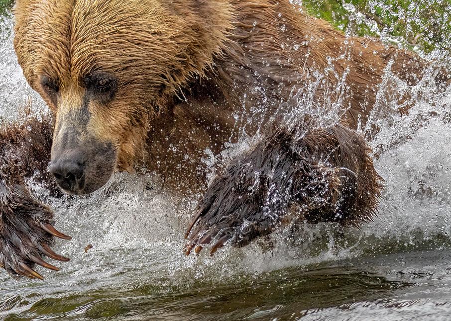 Spearfishing Photography Art | Carol Brooks Parker Fine Art Photography