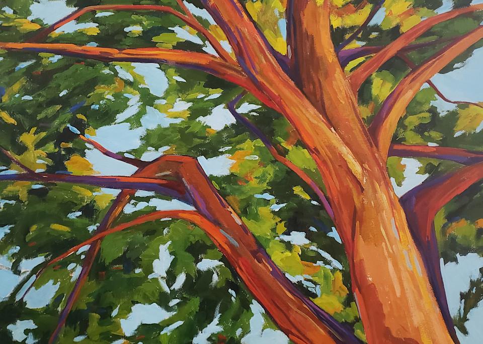 Looking Up I  Art | Jenn Hallgren Artist
